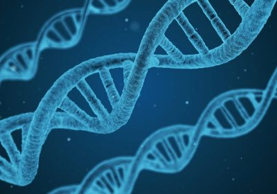 Coronavirus and Your DNA