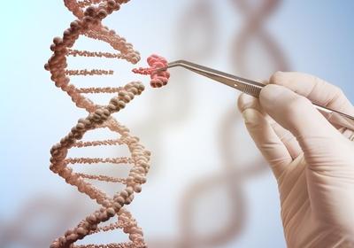 Autosomal testing vs Mitochondrial testing (mtDNA) vs Y-Chromosome testing