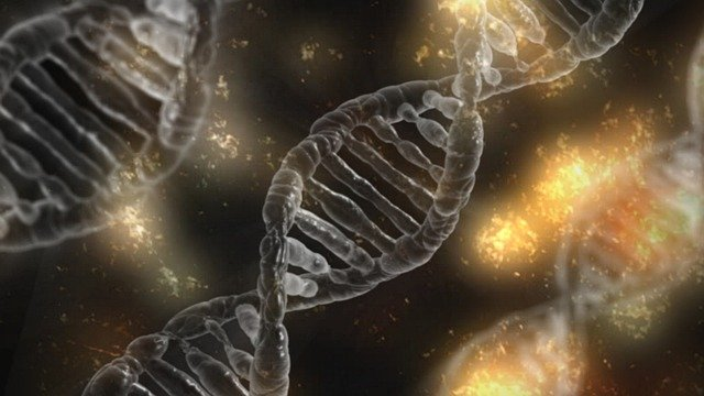 DNA Methylation: The Newest DNA Frontier
